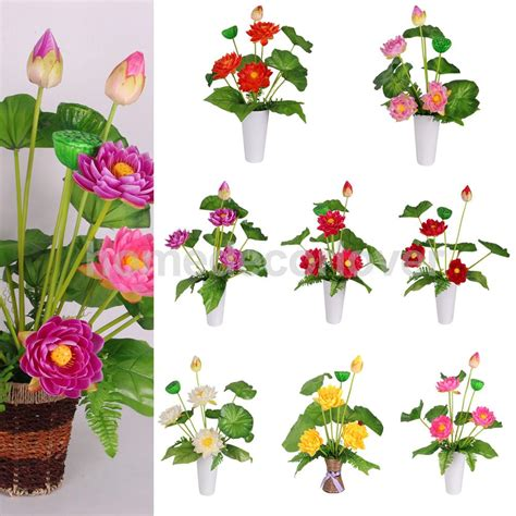 lotus flower to buy popular lotus flower bouquets buy cheap lotus flower