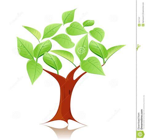trees symbolism modern tree symbol royalty free stock photography image