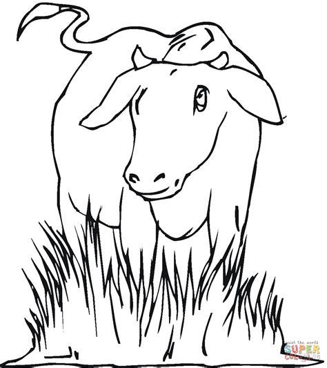 cow ears coloring page vaca dibujo para colorear haz click en caricatura de