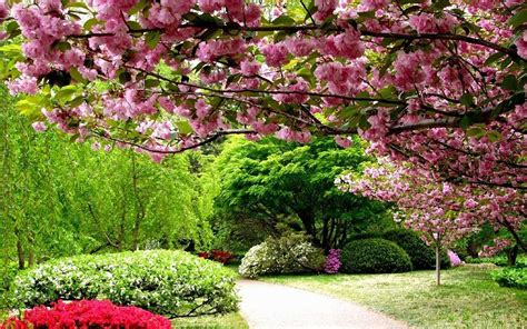 garden pictures for backgrounds wallpaper cave spring garden wallpapers wallpaper cave