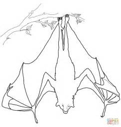 upside down coloring page flying fox hanging upside down coloring page free
