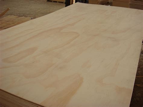 plywood sheet plywood buggaluggs