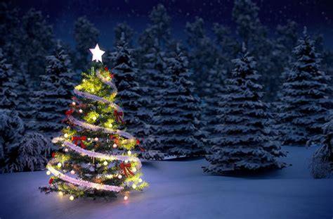 why do we have a christmas tree the real meanings behind