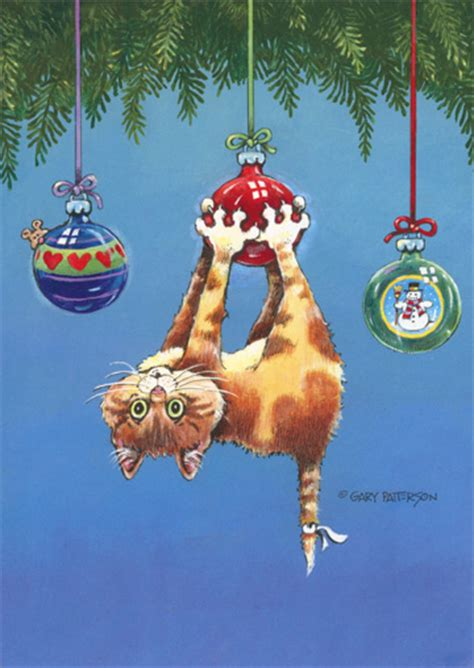 cat box   funny humorous christmas cards  lpg