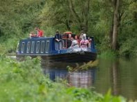 angel boat trip angel blue boat trips