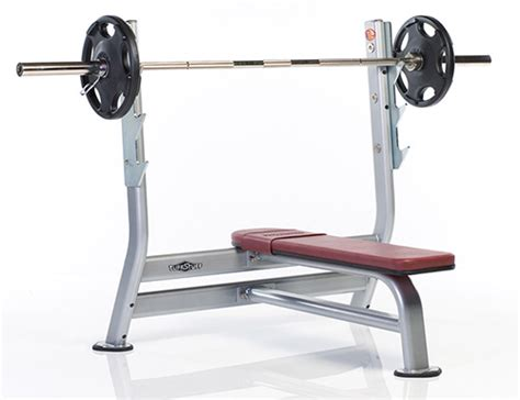 weight of olympic bar bench press marty gallagher raw bench press ultra basics