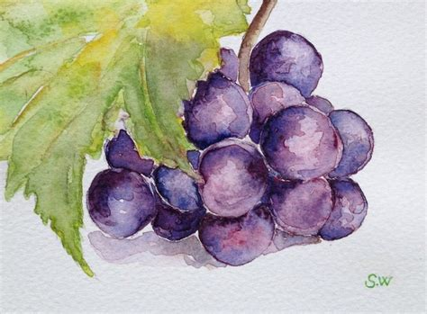 Watercolor Grapes Tutorial | 169 best watercolor grapes wine images on pinterest