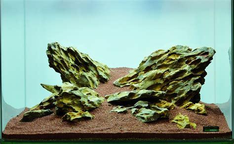 aquascaping stones hardscape