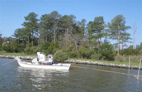 carolina skiff mullet boat mullet skiff boat plans