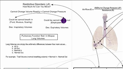 pattern lab vs kss respiratory physiology lab obstructive vs restrictive