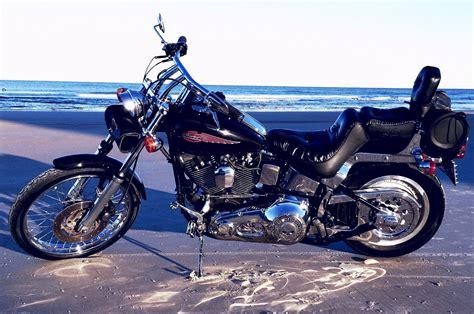 Daytona Harley Black 1999 harley davidson 174 fxstc softail 174 custom black daytona florida 552357