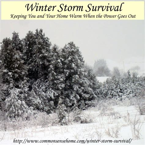 winter survival be prepared for water and electricity systems collapse books winter survival keeping warm when the power goes out