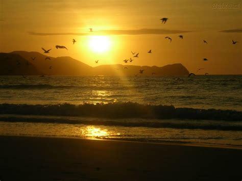 imagem lindas para zap fotos de paisagens lindas 2 mensagens e reflex 245 es