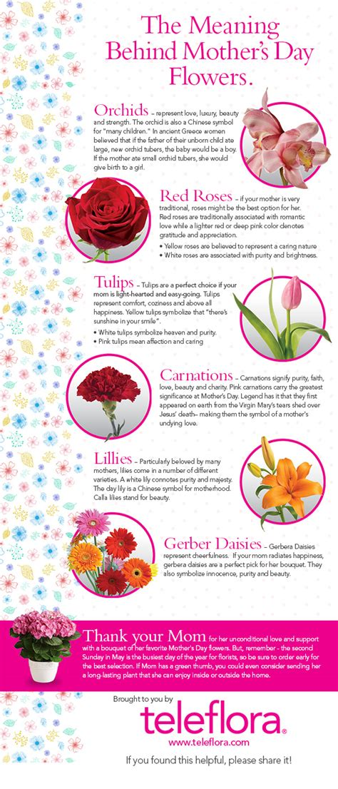 infographic the meaning of s day flowers
