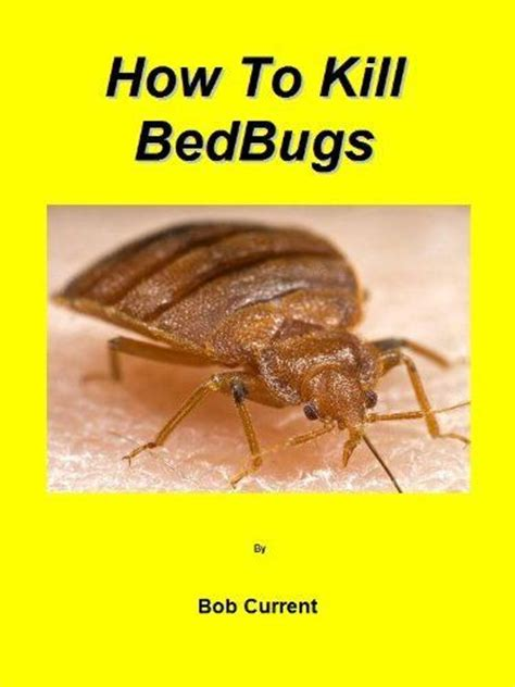 What Do Exterminators Use To Kill Bed Bugs by How To Kill Bedbugs By Bob Current 1 16 29 Pages