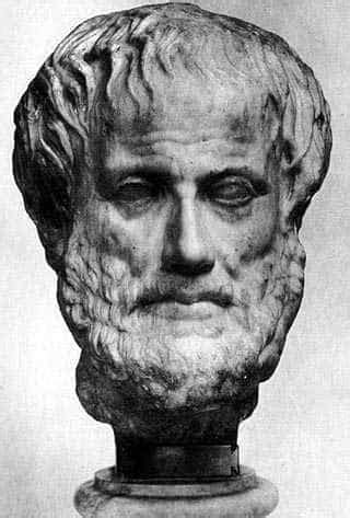 biography about aristotle aristotle biography 10 his life and time timeline