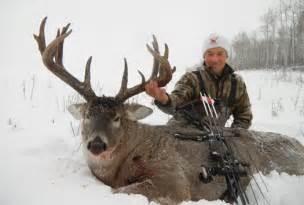 whitetail deer hunting alberta whitetail deer hunts