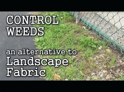 how to layout landscape fabric best landscape fabric for weed control vegetable garden
