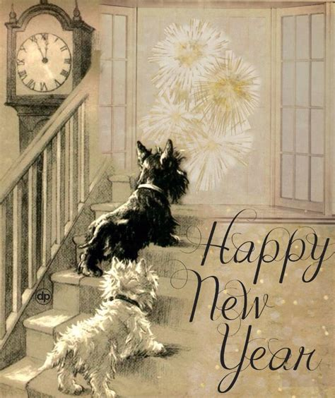 happy new year in scottish greeting 150 best asstd greetings images on scottie dogs scottish terriers and dogs