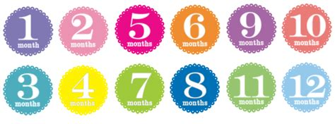 printable month numbers for baby 9 best images of printable baby monthly stickers