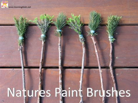 textured paint brushes textured painting with nature s paint brushes learning 4