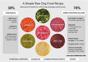 food recipes keep your pet healthy and happy