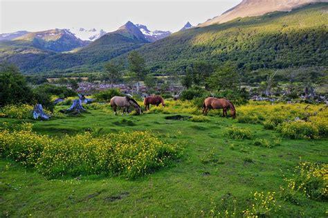 Fitz Roy Trekking & Perito Moreno Glacier Tour   Zicasso