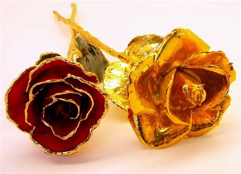 Alternative Valentine S Day Gifts by 1 Gold Dipped Rose And 1 Gold Trimmed Rose Gold Roses