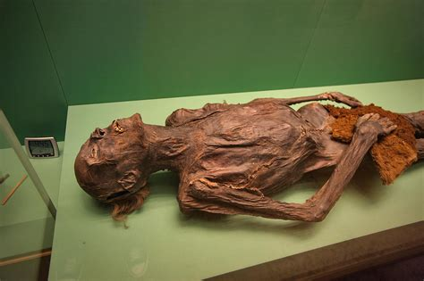 St Momy photo 1253 16 ancient mummy in basement in hermitage