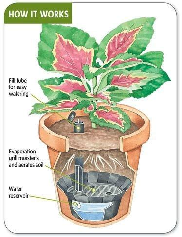 self watering planters how do they work advisor4uall