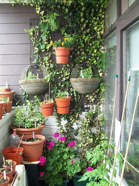 Pinterest The World S Catalog Of Ideas Balcony Wall Garden