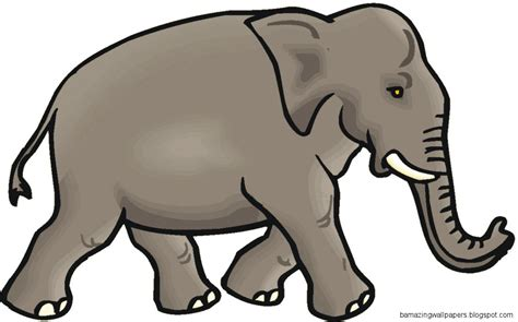 clipart picture elephant clipart clipart panda free clipart images