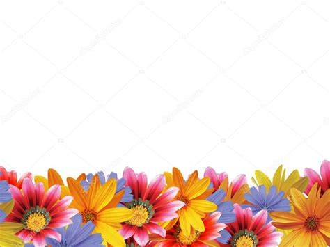 ci de fiori cornice fiore 2 foto stock 169 julydfg 2071423