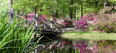 Pointe Homes Floor Plans by Experience Summer Wood In Summerville Sc Sabal Homes