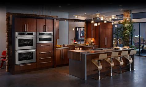 modern kitchen design ideas  incorporated appliances