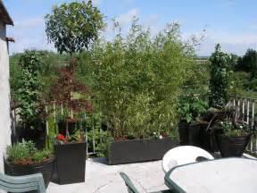 d 233 coration balcon terrasses fleurs plantes v 233 g 233 taux