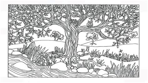 nature scene coloring pages nature coloring pages tree