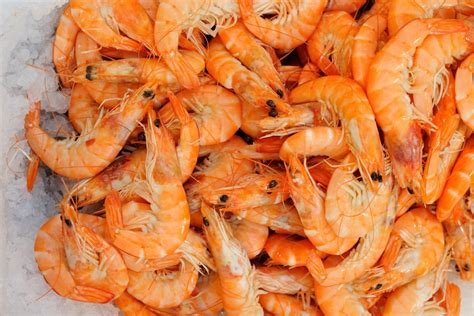 Shelf Of Cooked Shrimp by Tips For Buying And Cooking Shrimp The Splendid Table