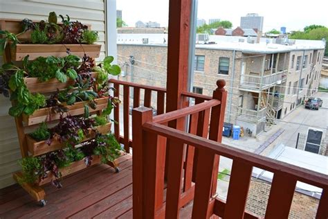 giardino balcone orto in balcone giardino in terrazzo come realizzare