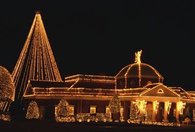 christmas light rentals