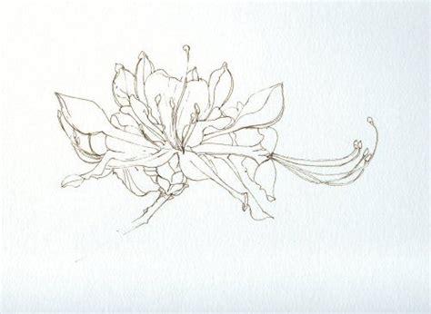 azalea tattoo designs azalea tattoos floral plant
