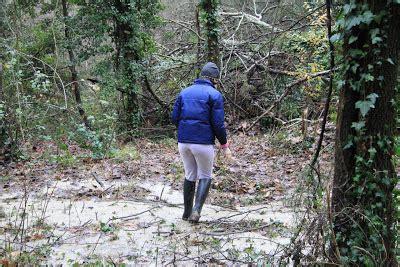 vivere a pierino nel bosco in cerca di ruscelli