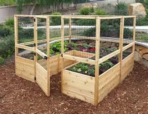 best 25 box garden ideas on raised gardens