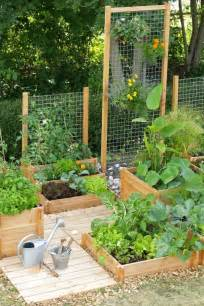 Vertical Gardening Trellis Ideas 1000 Ideas About Garden Trellis On Trellis