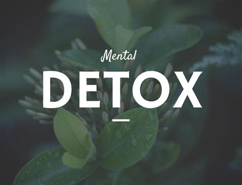 Doing A Mental Detox a mental detox the best cleanse of all