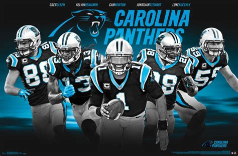 carolina panthers team