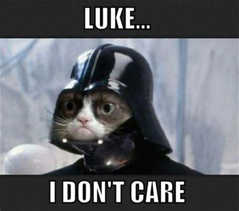 Star Wars Cat Meme - grumpy cat star wars funny pinterest