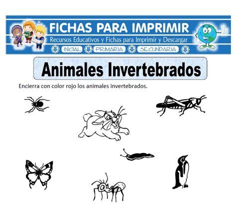 imagenes animales invertebrados para imprimir ficha de animales invertebrados para primaria fichas
