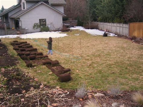 17 Best Images About Garden On Pinterest Gardens Raised Turn Lawn Into Vegetable Garden