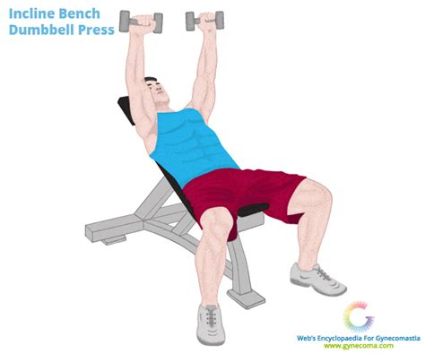 chest exercises with dumbbells no bench workouts to lose chest fat best 5 recommended by experts